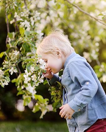 allergie aux pollens chez l'enfant