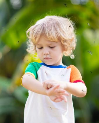 prévenir piqûres moustiques bébés